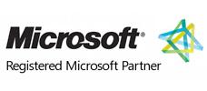partner tecnologici